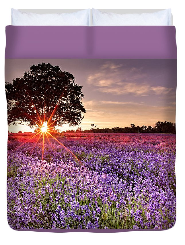 Scenics Duvet Cover featuring the photograph Lavender Field by Sandra Kreuzinger