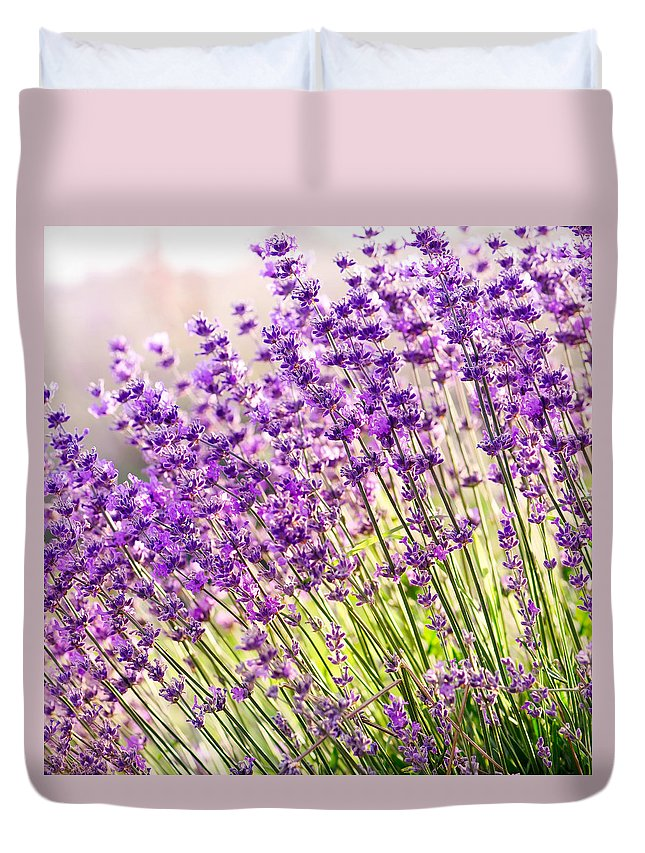 Lavender Duvet Cover featuring the photograph Lavender Flowers by Evgeni Ivanov