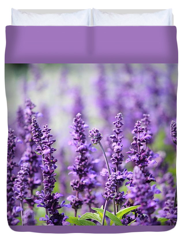 Season Duvet Cover featuring the photograph Lavender by Heike Hultsch