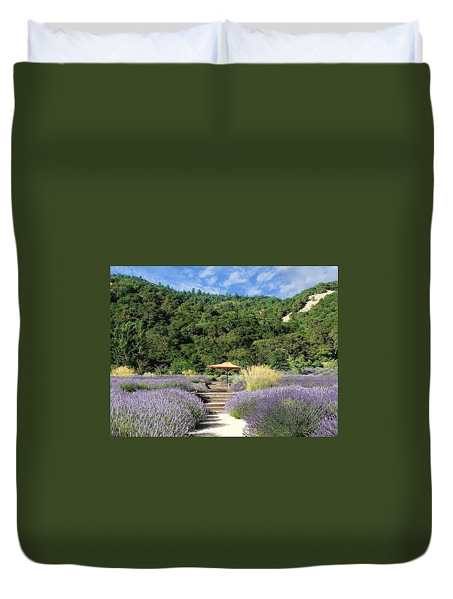 California Duvet Cover featuring the photograph Lavender Path by Steve Ondrus