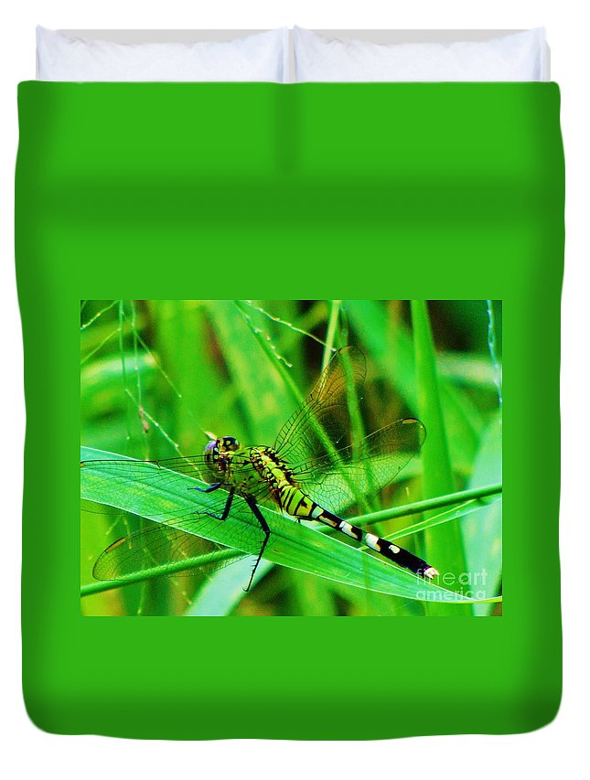 Dragonfly Duvet Cover featuring the photograph Layover by Keri West