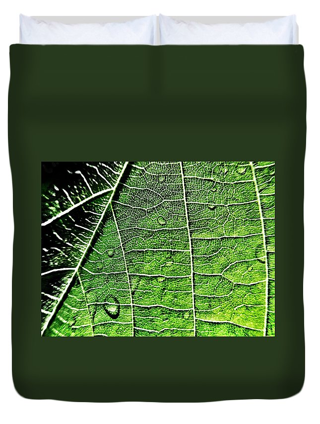 Leaf Duvet Cover featuring the photograph Leaf Abstract - Macro Photography by Marianna Mills