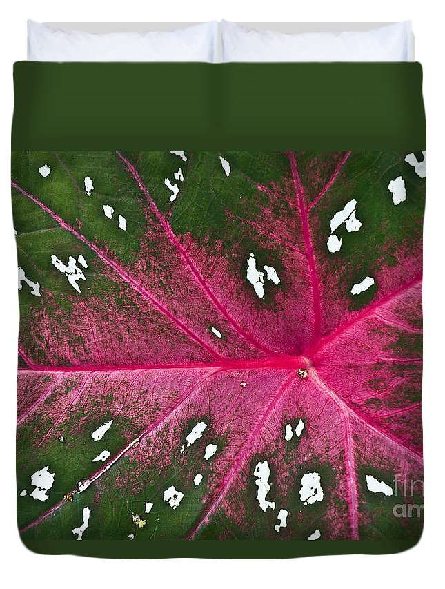 Heiko Duvet Cover featuring the photograph Leaf Detail by Heiko Koehrer-Wagner