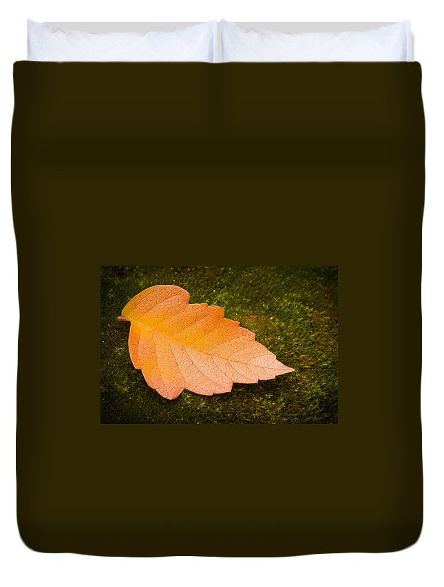 3scape Photos Duvet Cover featuring the photograph Leaf On Moss by Adam Romanowicz