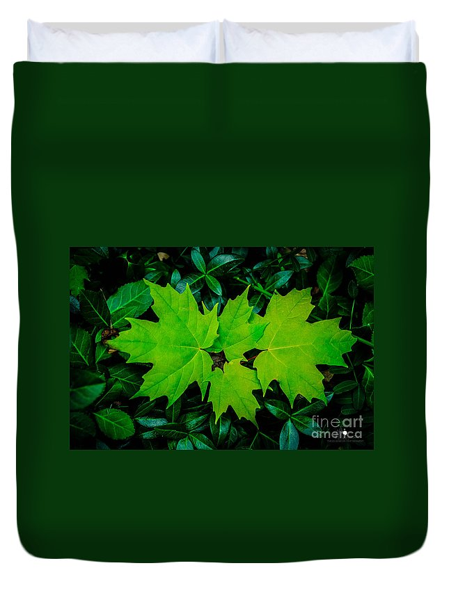 Eaton Rapids Duvet Cover featuring the photograph Leaf Overlay by Grace Grogan