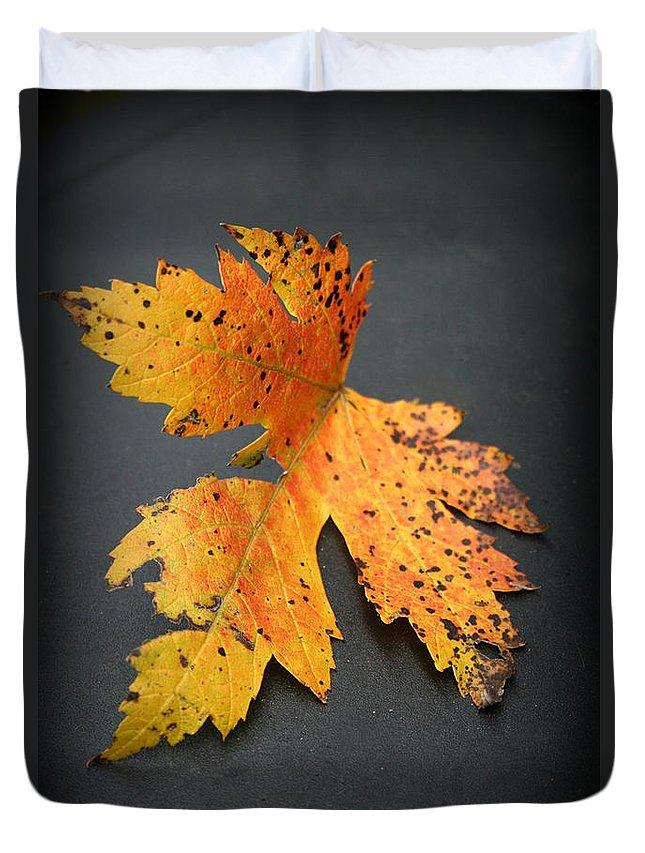 Nature Duvet Cover featuring the photograph Leaf Portrait by Linda Sannuti