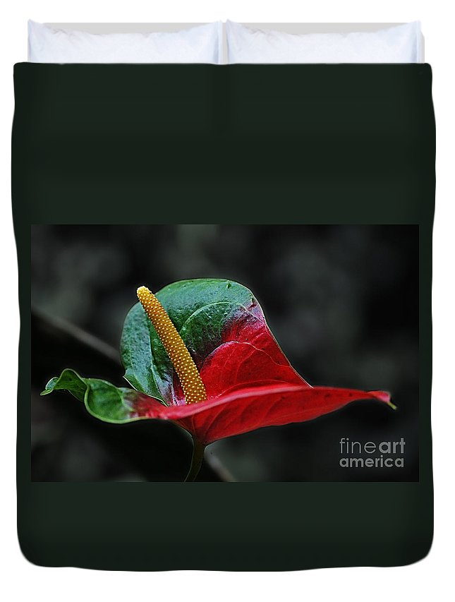 Nature Duvet Cover featuring the photograph Leafs 1 by Ben Yassa