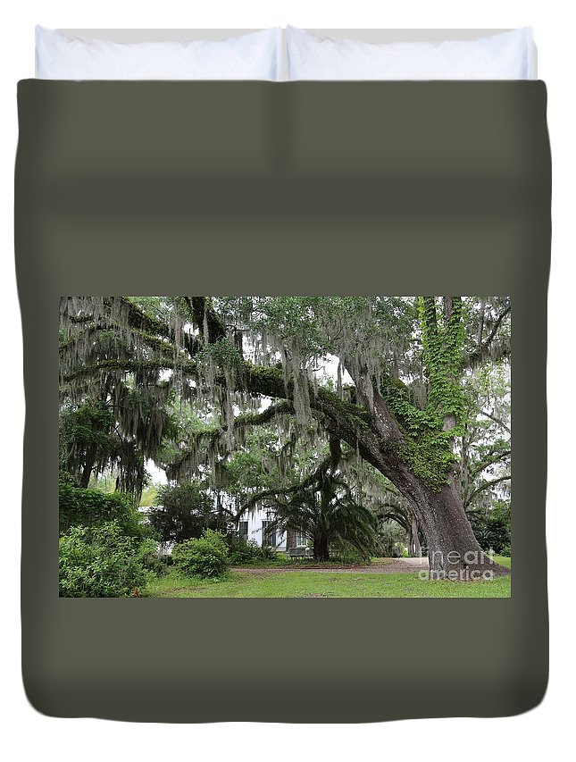 Live Oak Tree Duvet Cover featuring the photograph Leaning Live Oak by Carol Groenen