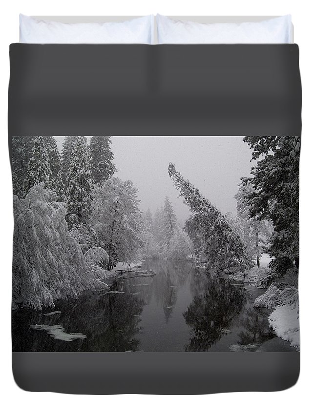 Tree Duvet Cover featuring the photograph Leaning Tree by Bill Gallagher