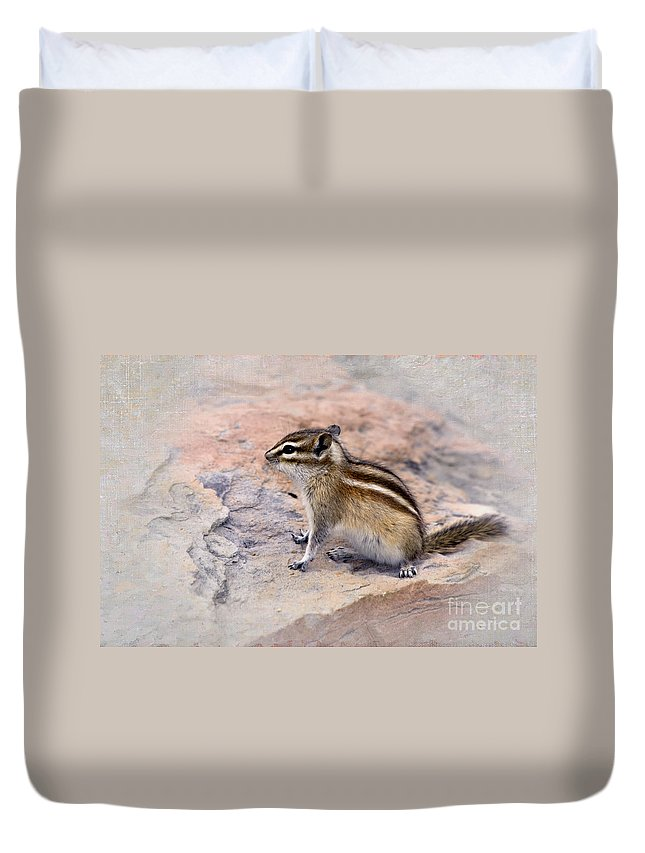 Least Chipmunk Duvet Cover featuring the photograph Least Chipmunk #2 by Betty LaRue