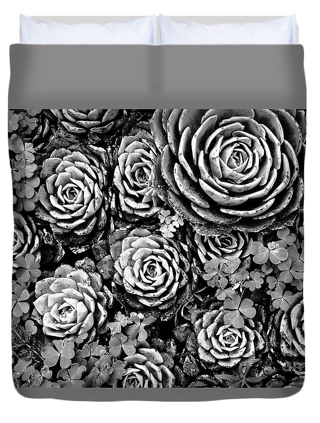 Cactus Duvet Cover featuring the photograph Leaves And Succulents by James Brunker