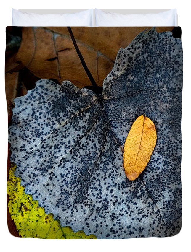 Leaves Duvet Cover featuring the photograph Leaves At Oak Openings by Michael Arend