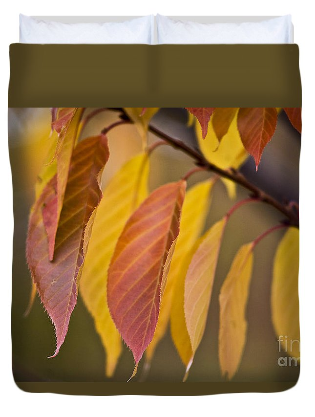Heiko Duvet Cover featuring the photograph Leaves In Fall by Heiko Koehrer-Wagner