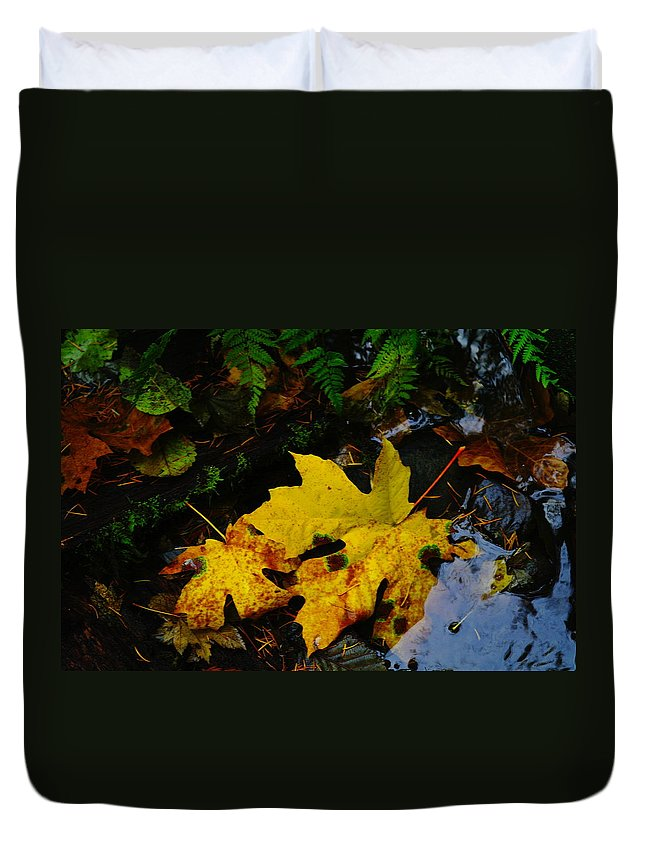 Leaves Duvet Cover featuring the photograph Leaves In Still Shallows by Jeff Swan
