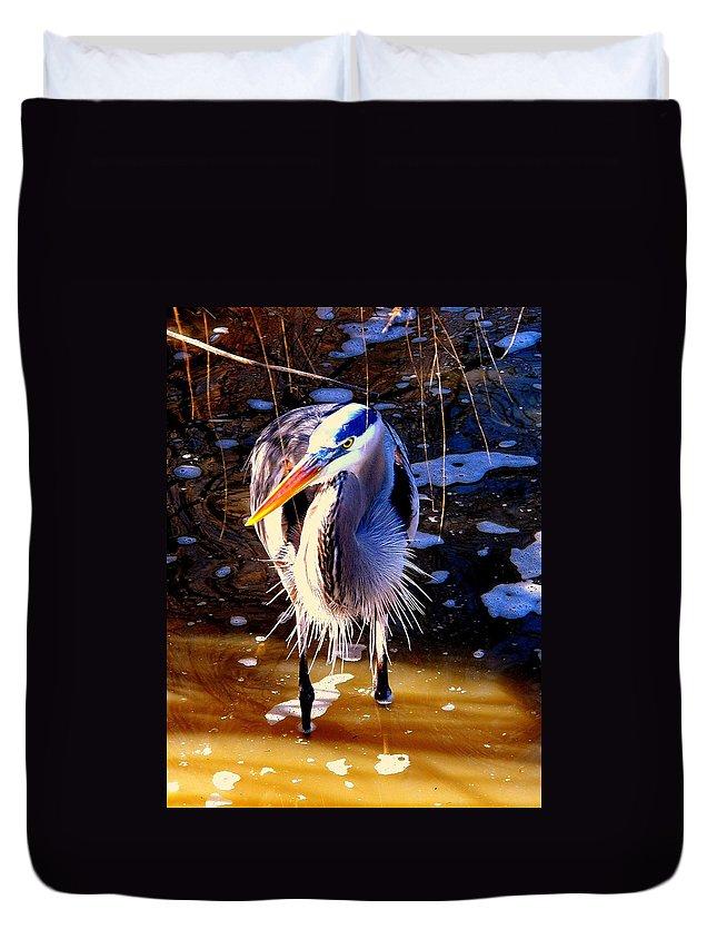 Birds Duvet Cover featuring the photograph Legs by Faith Williams