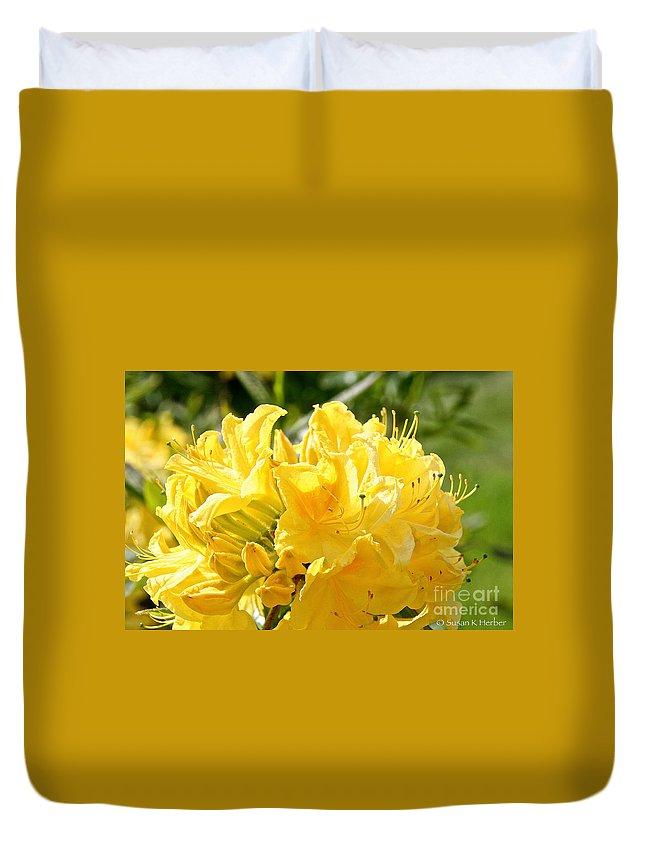Flower Duvet Cover featuring the photograph Lemon Drop Azalea by Susan Herber