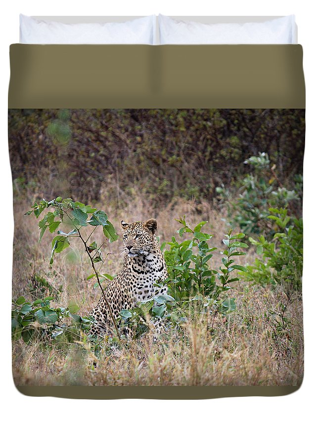 Leopard Duvet Cover featuring the photograph Leopard Sits by Christy Cox