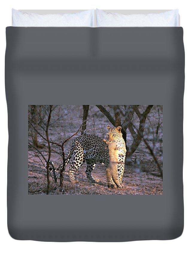 Leopard Duvet Cover featuring the photograph Leopard With African Wild Cat Kill by Paul Fell
