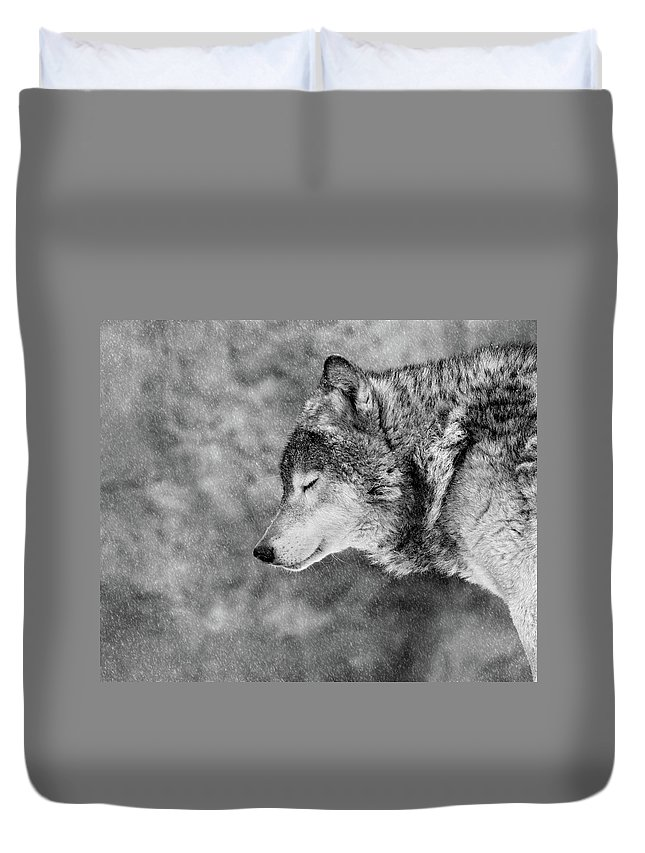 Wolves Duvet Covers
