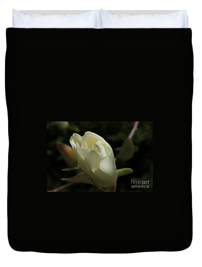 Bloom Duvet Cover featuring the photograph Let There Be Light by Joseph Yarbrough