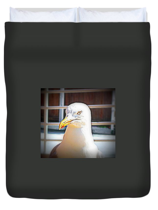 Sail Duvet Cover featuring the photograph Lets Take Off Together, To Your Place Or Mine  by Hilde Widerberg