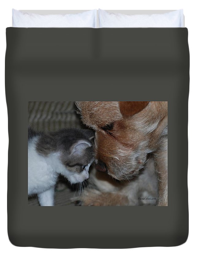 Animals Duvet Cover featuring the photograph Lets Talk by Thomas Woolworth