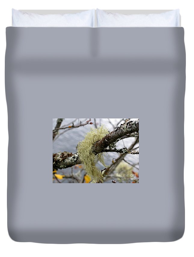 Branch Duvet Cover featuring the photograph Lichen On Tree by Leone Lund