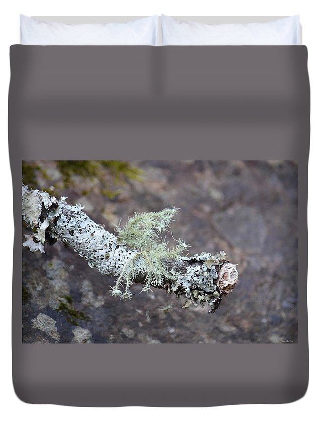 Lichens 2013 Duvet Cover featuring the photograph Lichens 2013 by Maria Urso
