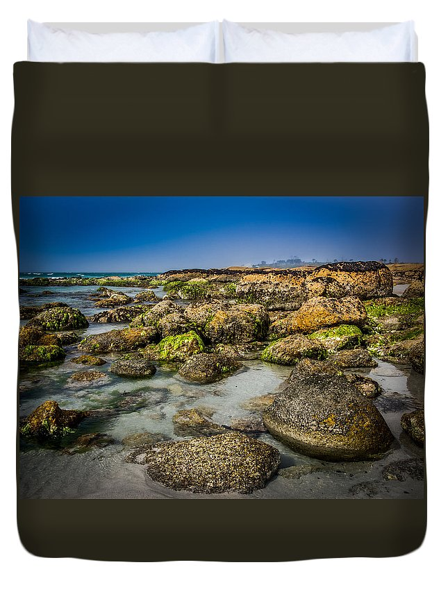 Beach Duvet Cover featuring the photograph Life Clings As The Tides Ebb by Kaleidoscopik Photography