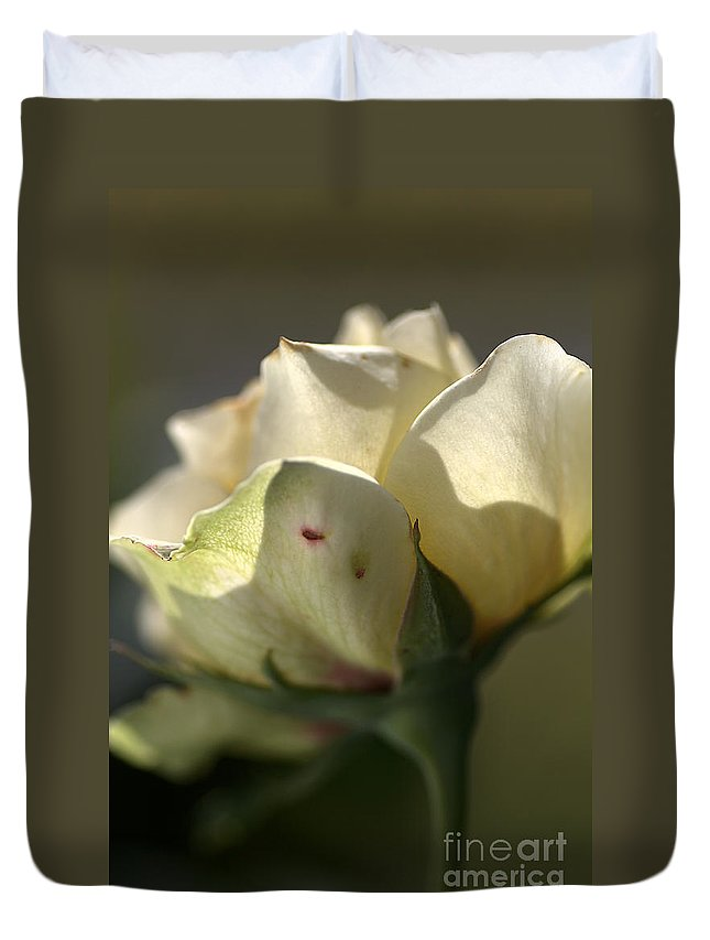 Lemon Rose Duvet Cover featuring the photograph Light On My Face by Joy Watson
