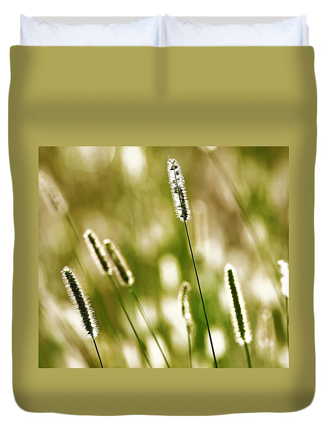 Grass Duvet Cover featuring the photograph Light Play by Andy Crawford