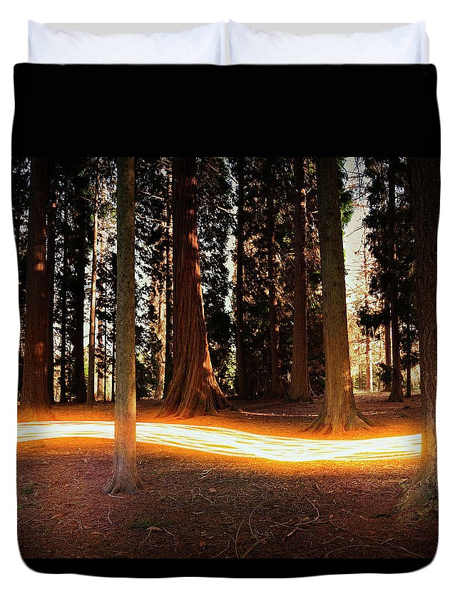 Kent Duvet Cover featuring the photograph Light Trail Passing Around Trees by Robert Decelis Ltd
