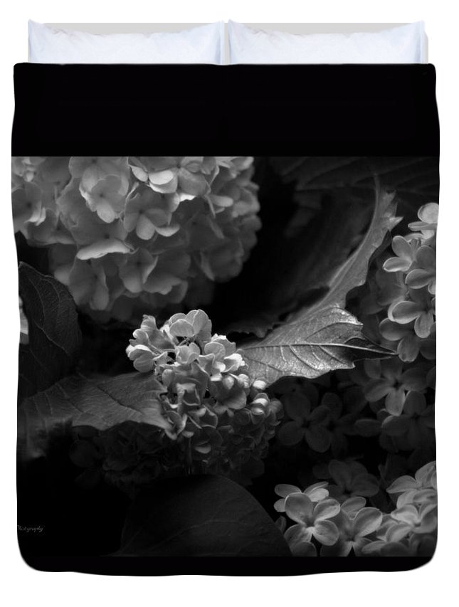 Lilac Duvet Cover featuring the photograph Lilacs And Hydrangeas by Jeanette C Landstrom