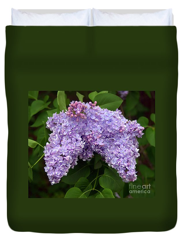 Lilacs Duvet Cover featuring the photograph Lilacs by John Greco