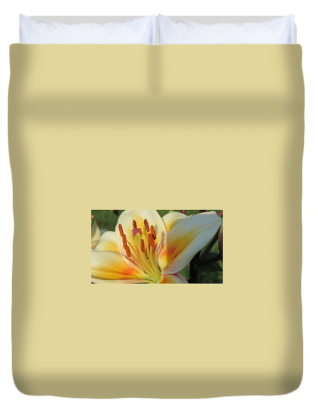 Flower Duvet Cover featuring the photograph Lilly White 2 by Anita Burgermeister