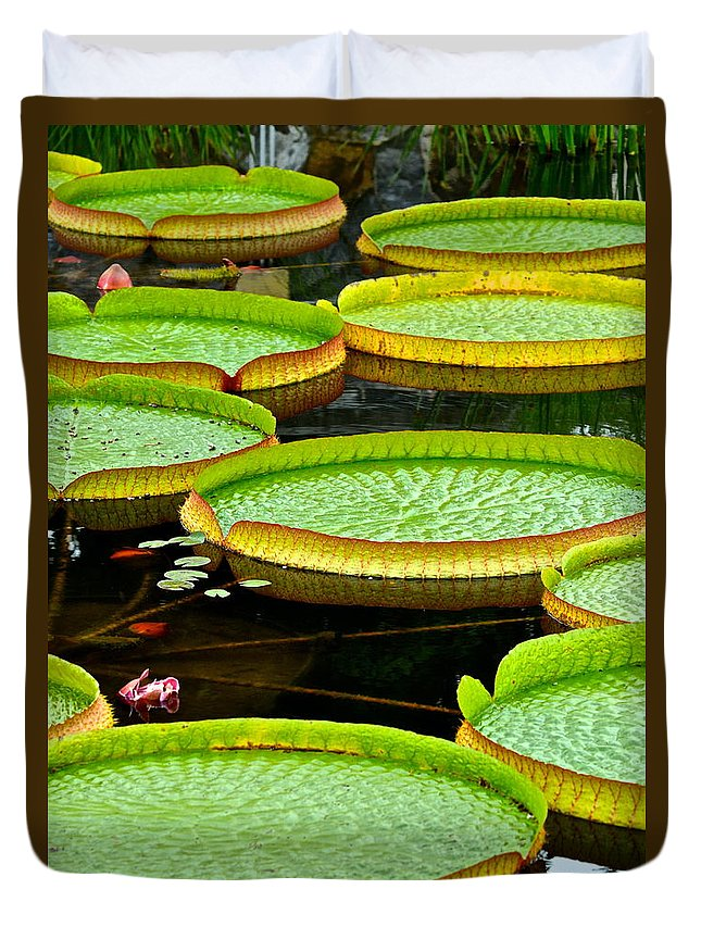 Lily Duvet Cover featuring the photograph Lily Pad Pond by Frozen in Time Fine Art Photography