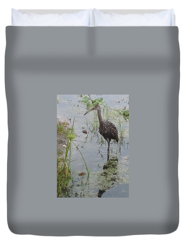 Limpkin Duvet Cover featuring the photograph Limpkin by Janet K Wilcox