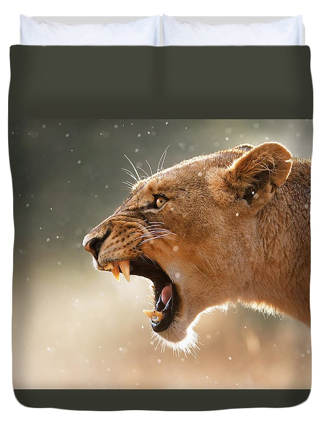Cats Duvet Covers