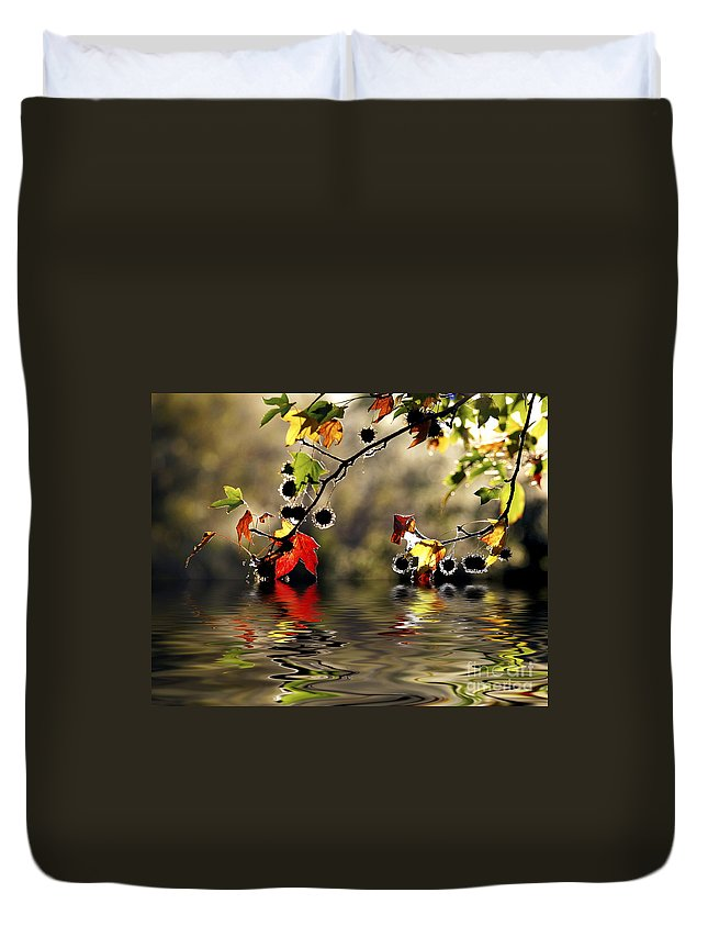 Liquidambar Maple Autumn Fall Flood Water Reflection Duvet Cover featuring the photograph Liquidambar In Flood by Sheila Smart Fine Art Photography