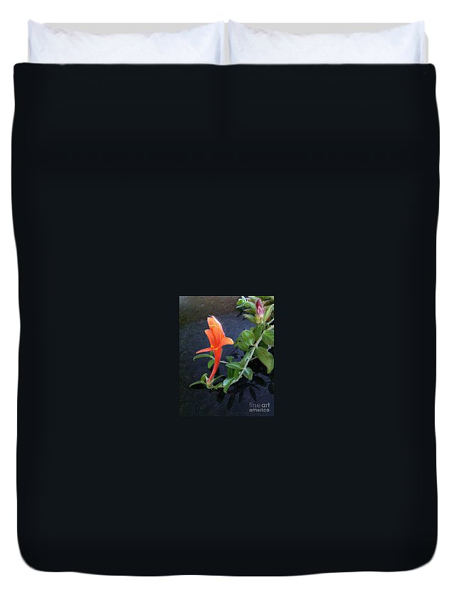 Dolphin Duvet Cover featuring the photograph Little Dancing Dolphin Plant by Brenda Brown