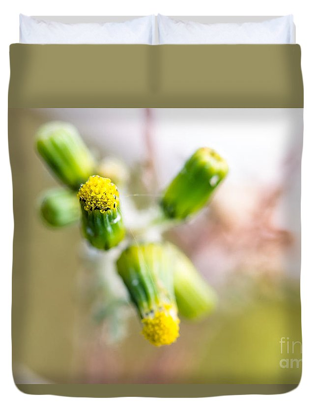 Duvet Cover featuring the photograph Little Flower 03 by Edgar Laureano