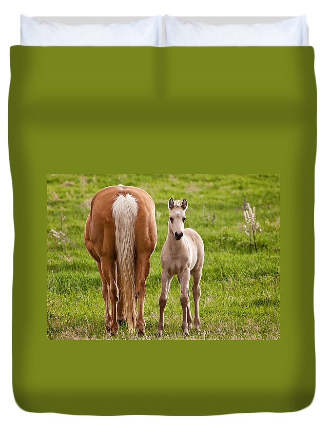 Horse Duvet Cover featuring the photograph Little Foal by Donna Doherty