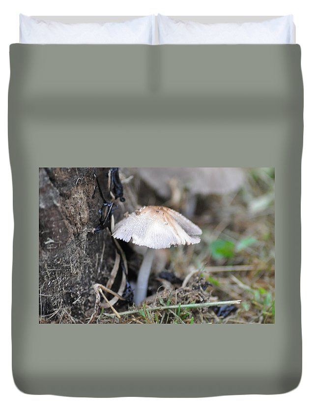 Little Duvet Cover featuring the photograph Little Mushroom by Bill Cannon