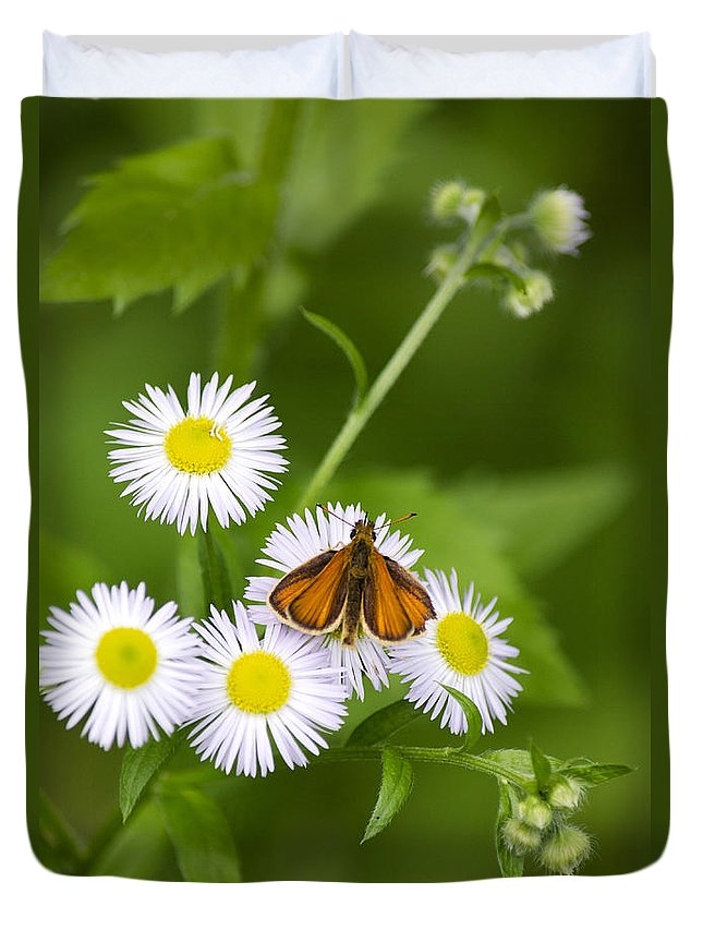 Little Duvet Cover featuring the photograph Little Orange Skipper by Christina Rollo