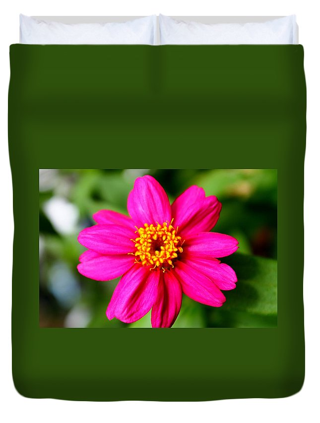Zinnia Duvet Cover featuring the photograph Little Pinky by Catie Canetti