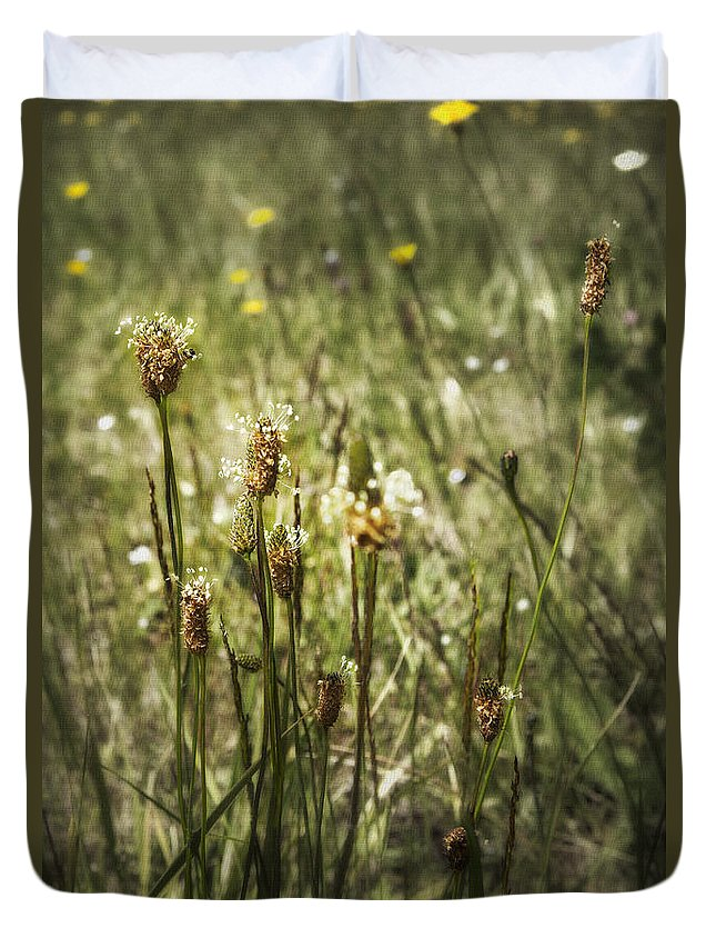 Weeds Duvet Cover featuring the photograph Little Weeds by Belinda Greb