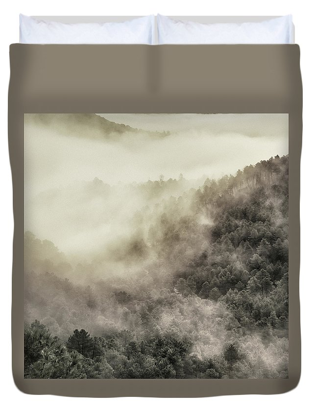Duvet Cover featuring the photograph Live Wild Retro Series by Guido Montanes Castillo
