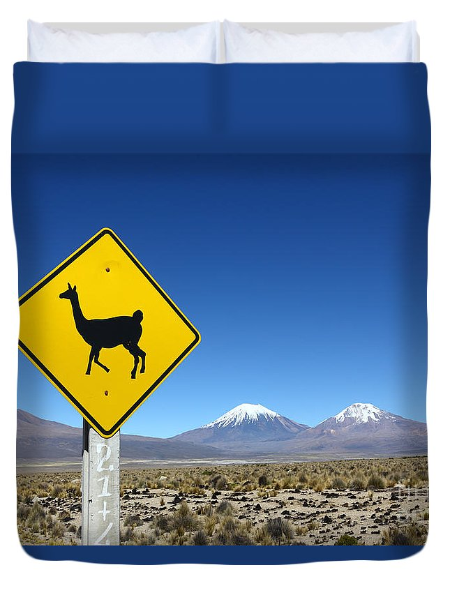 Signs Duvet Cover featuring the photograph Llamas Crossing Sign by James Brunker