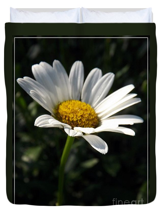 Flower Duvet Cover featuring the photograph Lone Daisy by Sara Raber