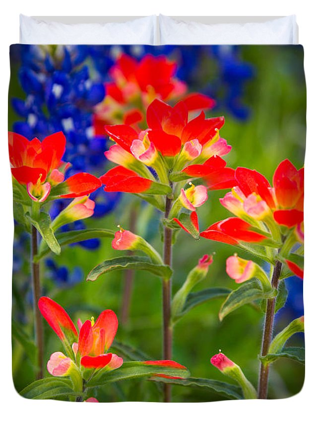 America Duvet Cover featuring the photograph Lone Star Blooms by Inge Johnsson